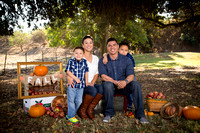 2015 Fall Mini Sessions