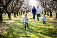 Sanchez_Almond Orchard 2014